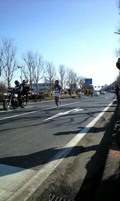 マラソン犬3