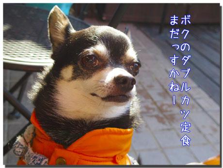 blog20120304d.jpg