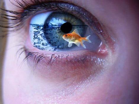 個性的で美しい目の写真いろいろ