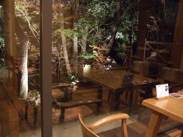 森の響(夜)0019