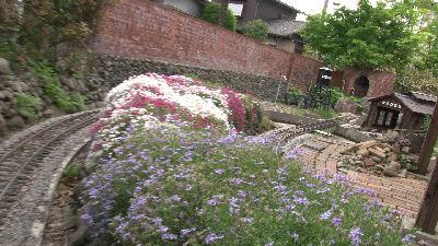 鉄道懐古園のきれいな花