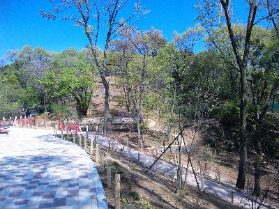 工事中の公園