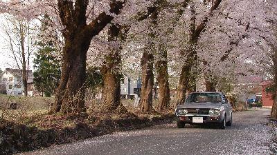 マツダルーチェカスタムセダンと新潟・十日町の桜