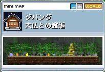 Maple336.jpg