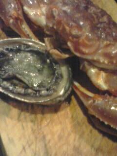 あわびと松葉蟹