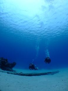 綺麗な海でしたよ~(≧▽≦)♪