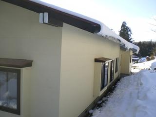 20110202blog.jpg