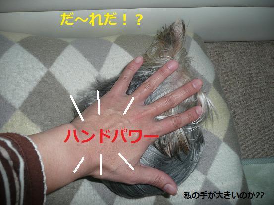 007_20091127183514.jpg