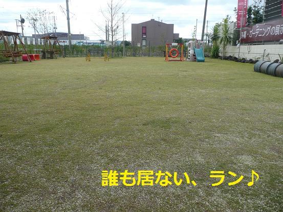 008_20091118214629.jpg