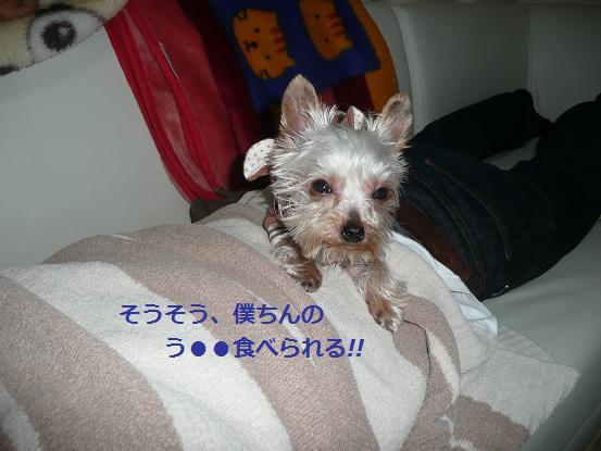 009_20091204195333.jpg