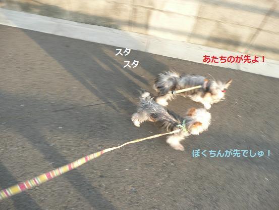 010_20091007084816.jpg