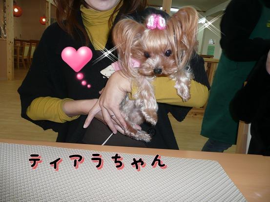 010_20100119071632.jpg