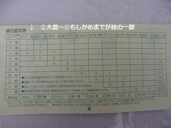 017_20100116083713.jpg