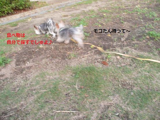 019_20091007090612.jpg