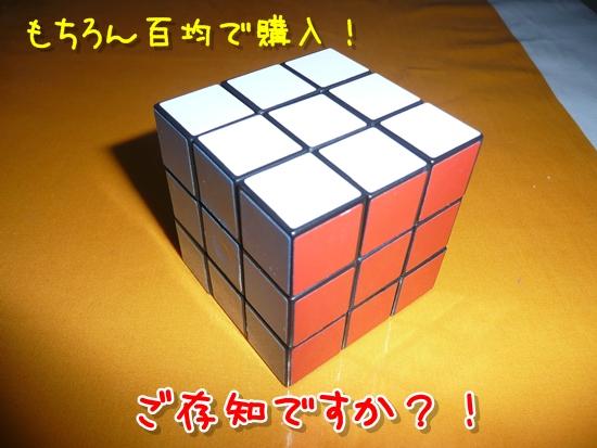 022_20100126182535.jpg