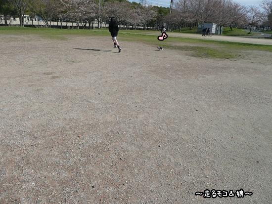 022_20100329072412.jpg