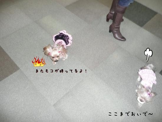 032_20100119173925.jpg
