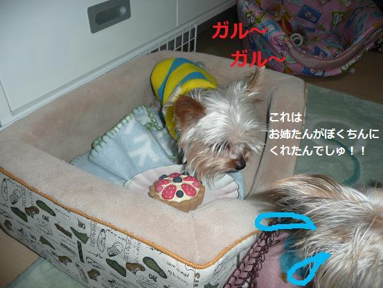 045_20091018213530.jpg