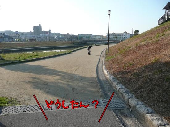 045_20100227075539.jpg