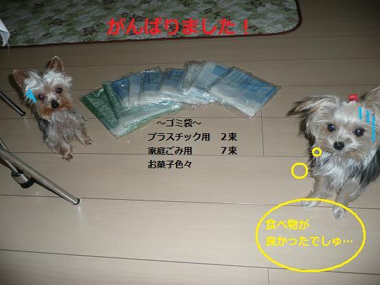 047_20091004223707.jpg