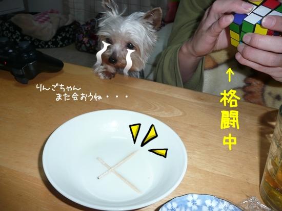 047_20100206183731.jpg