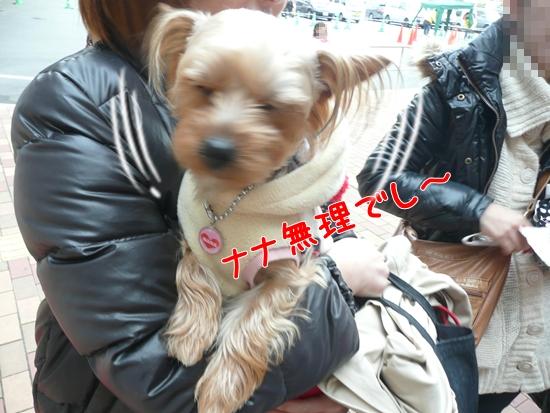 047_20100218180151.jpg