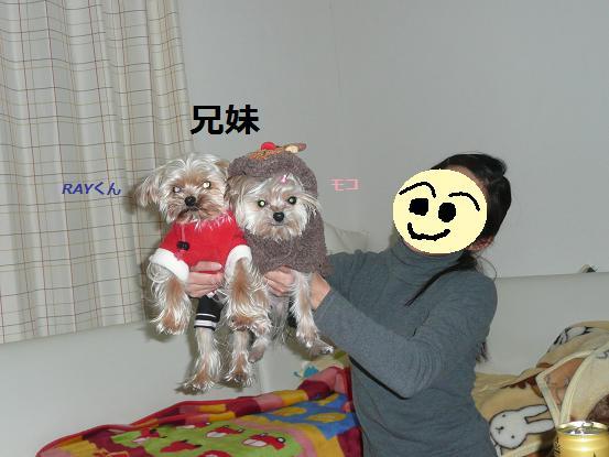 052_20091226084826.jpg