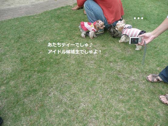 053_20091012180935.jpg