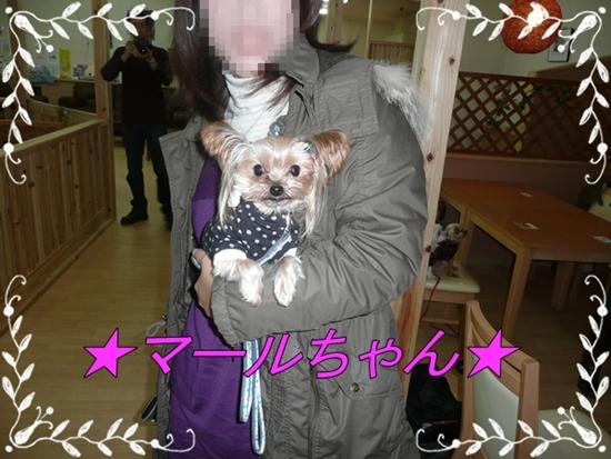 068_20091214070114.jpg