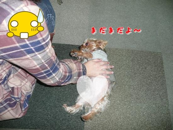 079_20100119170647.jpg