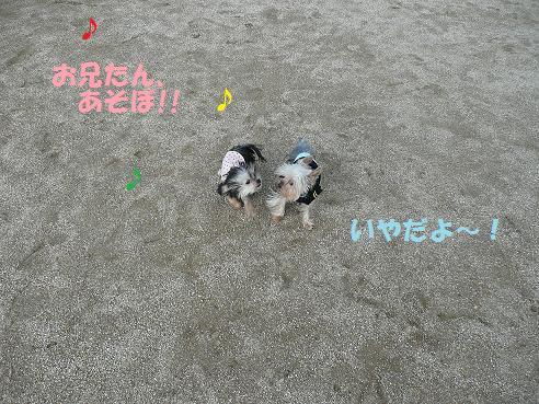 024 - コピー