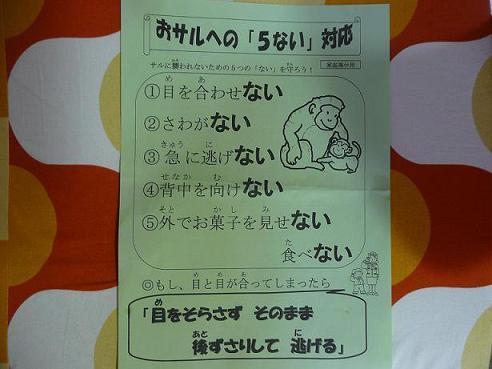 003 - コピー (2)