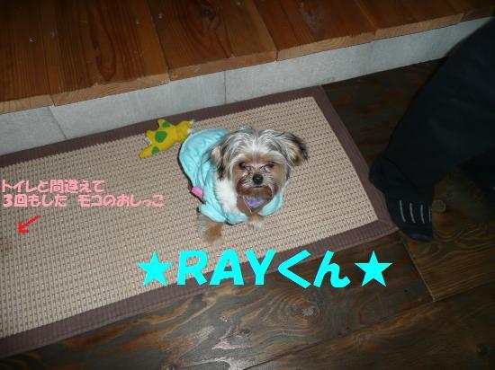 RAYくん
