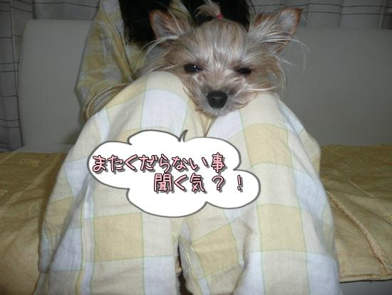 モコ (2)