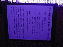 P1480799.jpg