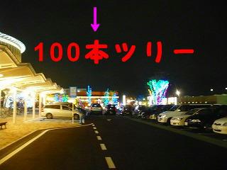P1490353.jpg