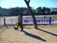 P1510666.jpg