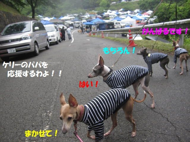 010a_20100531001415.jpg
