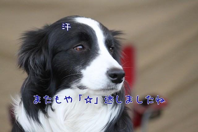 jzvA_.jpg