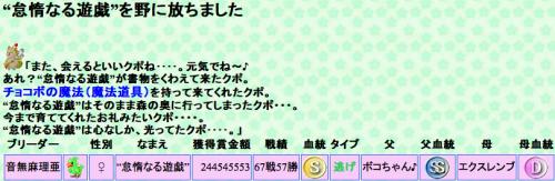 零マリ チョコ詰め候補4-2