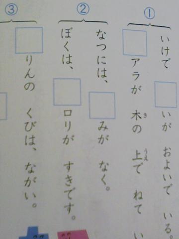 bokuharorigasukidesu.jpg
