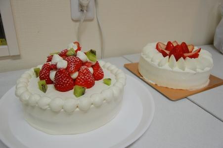 可憐ちゃんケーキ