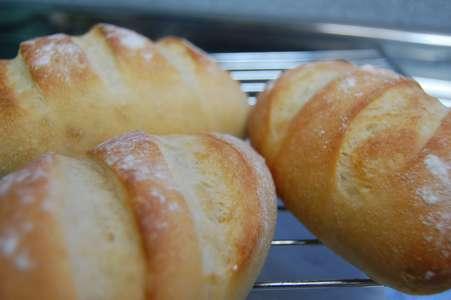 フナ寿司酵母パン