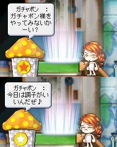 Maple000007.jpg