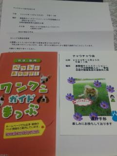 DVC00076_20091013201127.jpg