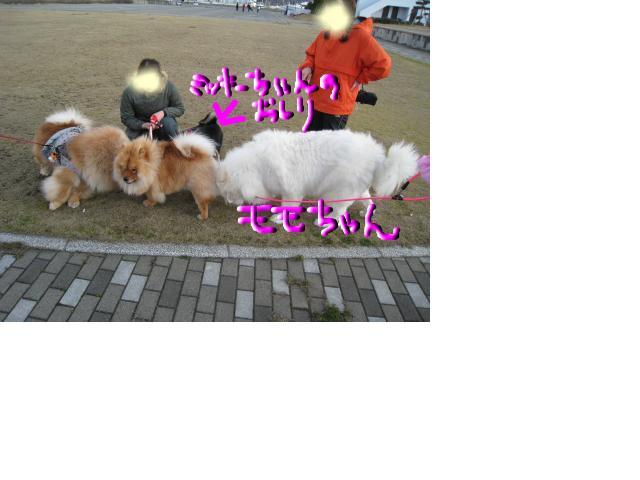 snap_ringio20070822_200945204150.jpg