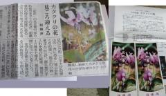 0413katakuri2.jpg