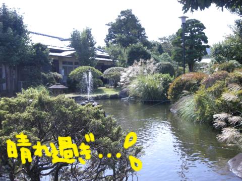 部屋の前の庭.