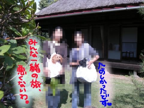 かやぶき屋根の古民家に犬5匹…以下同文(笑.