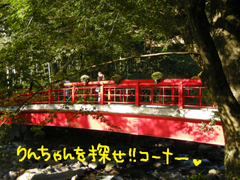 赤い欄干って、なんだかロマンチックな気分になりません?